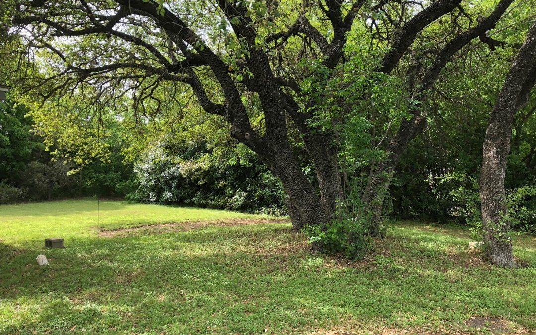 14951 Running Deer Trail, Austin, TX 78734